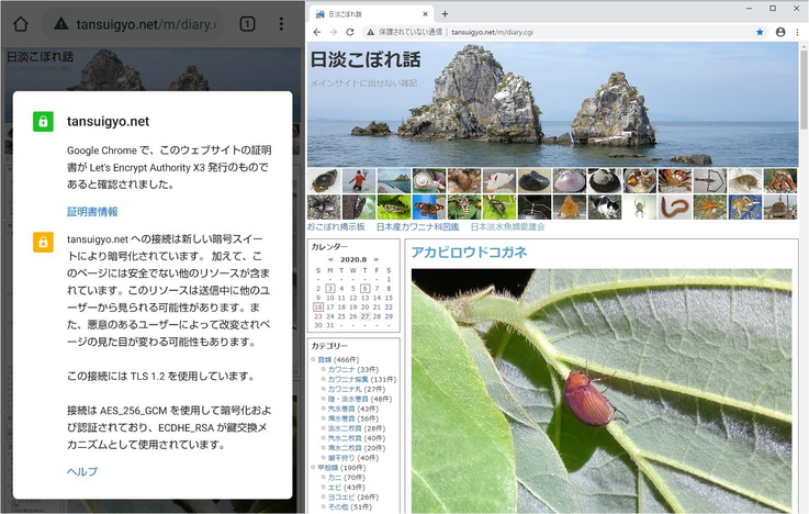 ファイル 1510-1.jpg