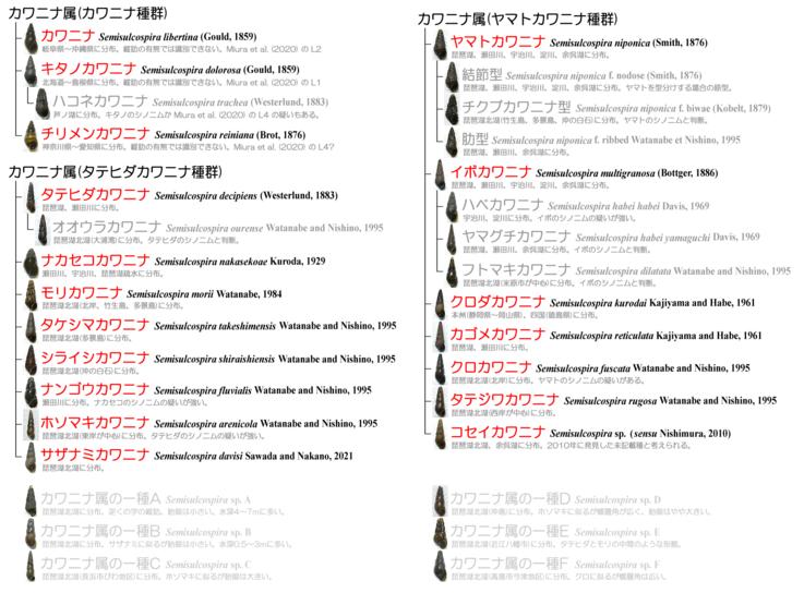 ファイル 1554-1.png