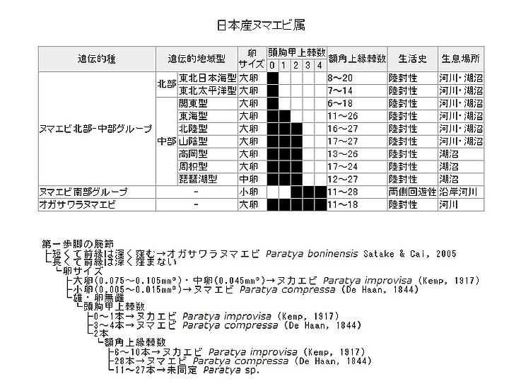 ファイル 793-1.jpg
