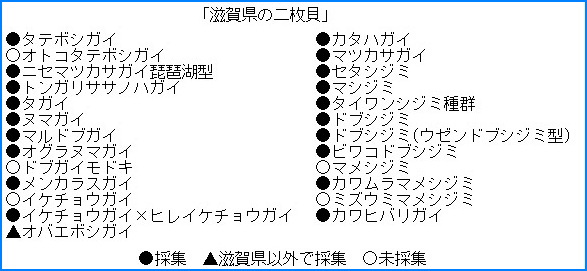 ファイル 1390-2.jpg